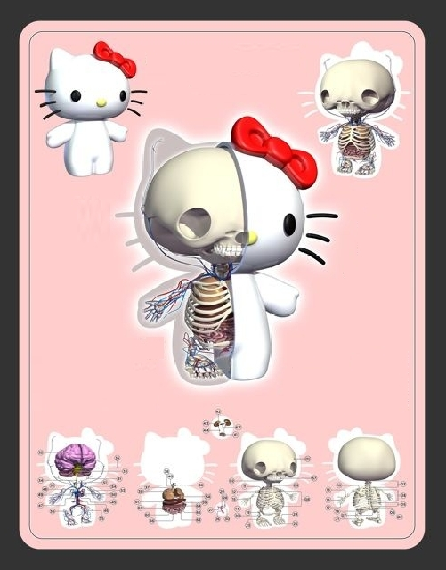 hello kitty anatomia